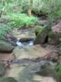 205 Turkey Trail - Photo 61