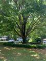 110 Spring Drive - Photo 7