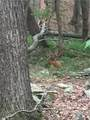 0 Buckeye Trail - Photo 7