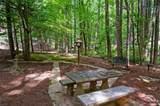 1235 Woodland Trace - Photo 47