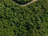 LT 10 Long Branch Trail - Photo 13