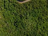 LT 10 Long Branch Trail - Photo 30