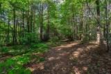 LT 10 Long Branch Trail - Photo 4