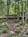 0 Cohutta Forest Rd - Photo 3
