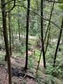 0 Cohutta Forest Rd - Photo 31