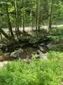0 Cohutta Forest Rd - Photo 6