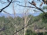 1379 Foxhound Trail - Photo 7