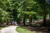 130 Villa Magnolia Lane - Photo 68