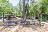 489 Pine Tree Drive - Photo 62