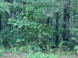 0 Northland Trail - Photo 3