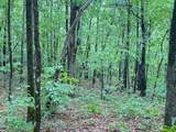 0 Northland Trail - Photo 6