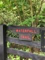 215 Saddlehorn Trail - Photo 37
