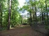 4331 Vineyard Trail - Photo 61