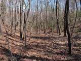 0 Splinter Trail - Photo 5