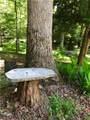 1238 Deer Woods Trail - Photo 44