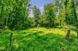 2862 Tree Top Road - Photo 42