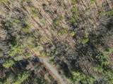 2619 Highland Trail - Photo 6