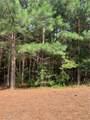 310 Burgess Mill Trail - Photo 4