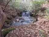 42. Huckleberry Cove Way - Photo 43