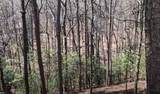 170 Crazy Bear Ridge - Photo 2