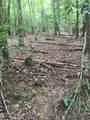 0 Old Deer Path Way - Photo 10