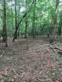 0 Old Deer Path Way - Photo 4
