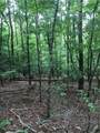 0 Old Deer Path Way - Photo 5