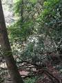 0 Old Deer Path Way - Photo 7