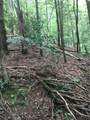 0 Old Deer Path Way - Photo 9