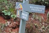 8131 Wilderness Parkway - Photo 5