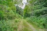 2.85 Acres On Reece Mountain Rd - Photo 18
