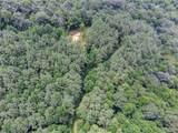 2.85 Acres On Reece Mountain Rd - Photo 3