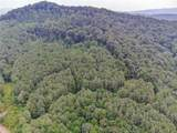 2.85 Acres On Reece Mountain Rd - Photo 8