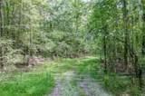 251 Murphy Trail - Photo 13