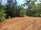 142 Timber Fern Drive - Photo 4