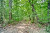 Lot 12 Amicalola Woods - Photo 10