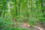 Lot 12 Amicalola Woods - Photo 12
