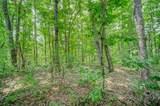 Lot 12 Amicalola Woods - Photo 14