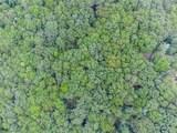 Lot 12 Amicalola Woods - Photo 40