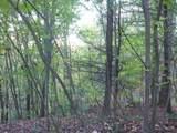 5578 Black Bear Trail - Photo 8