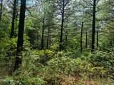 9 Eastview Trail - Photo 3