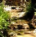 9 Eastview Trail - Photo 9
