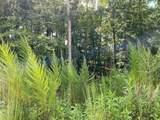 7057 Hammock Trail - Photo 2