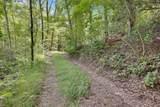 0 Oakey Mountain 117 Acres Road - Photo 16