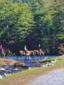 Lot866 Little Hendricks Mountain Road - Photo 29