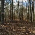 1377 Foxhound Trail - Photo 3