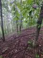 1696 Shade Tree Drive - Photo 9