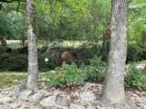 528 Elkmont Trail - Photo 24