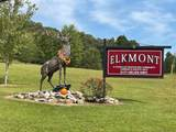 528 Elkmont Trail - Photo 39