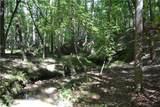 00007 Brushy Mountain Road - Photo 10